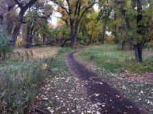rainy pathways through October