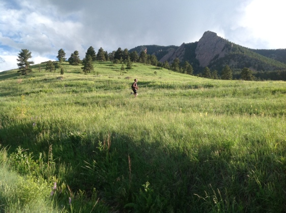 A trail run on a gorgeous day in Boulder.